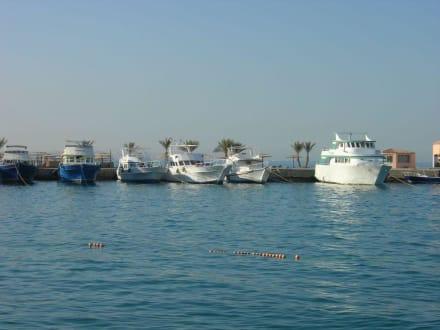 Tauch- und Schnorchelboote am Strand - Yachthafen Hurghada
