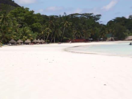 ein sehr schöner Strand - Strand Bucht Volbert