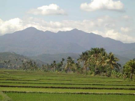 Rundreisemotiv 8-Stundenausflug - Westküste Lombok