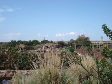 Blick auf Rancho Texas - Reitschule Rancho Texas