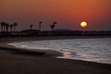 Evening Soma Bay -