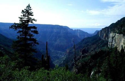 Grand Canyon - Grand Canyon