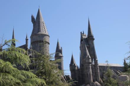 Harry Potter wird aufgebaut! - Universal Studios