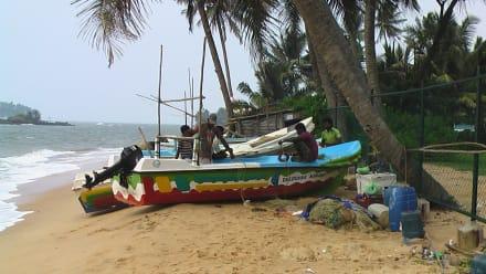 Fischerboote - Strand Beruwela