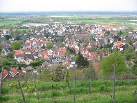 Blick auf Zwingenberg - Zwingenberg