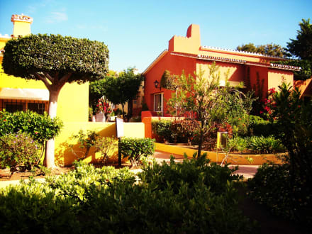 Wunderschöne Vegetation der Hotelanlage - Hotel Marbella Playa