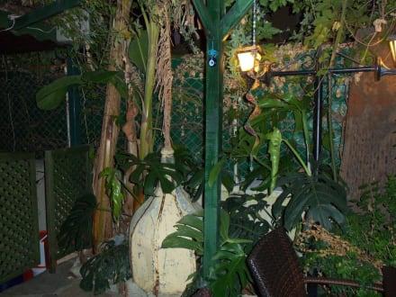 Idylle im Garten - Anik Hotel