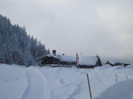 Blick Richtung Halseralm im Winter - Halseralm