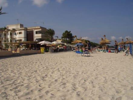 Strand und Strand-Bar - Strand Alcudia