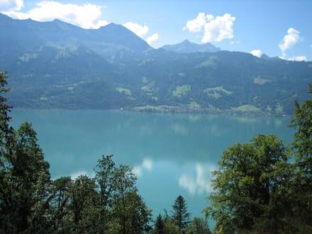 Blick auf den Thunersee - Thuner See