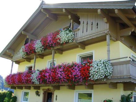 sch ne balkone bild freihof appartements in s ll tirol. Black Bedroom Furniture Sets. Home Design Ideas