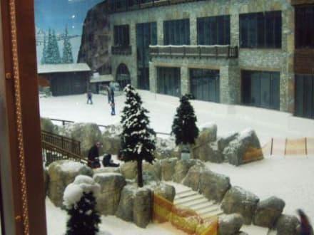 Ski Halle - Ski-Dubai Halle (Mall of the Emirates)