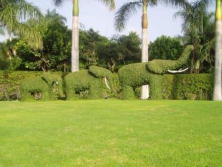 Schöne Dekoration schon vor dem Eingang - Loro Parque