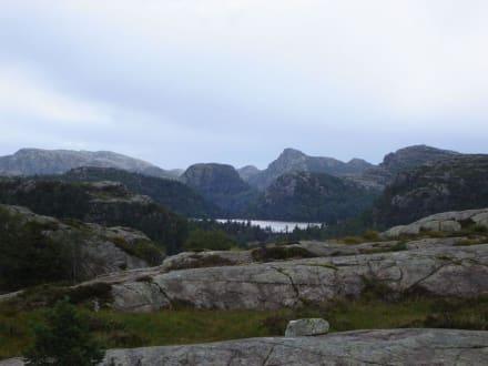 wilde Landschaft - Prekestolen