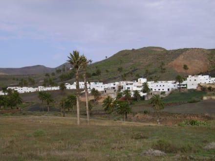 Blick auf Teil des Dorfes - Tal der tausend Palmen