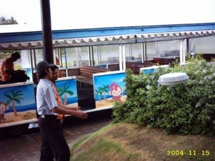 Zug zum Flug - Flughafen Koh Samui (USM)