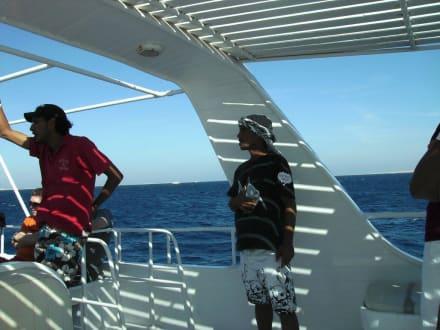 Animateure - Giftun / Mahmya Inseln
