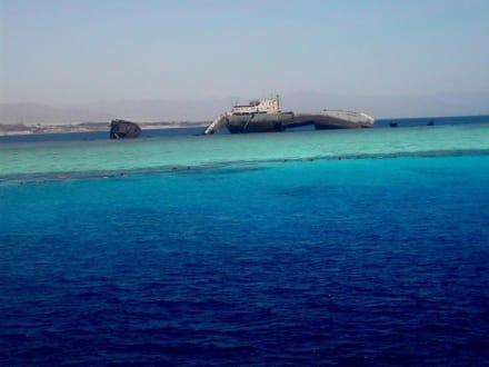 Ausflug zur Strasse von Tiran - hier der erste Schnorchelsto - Schiffswrack von Tiran