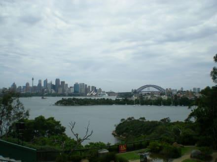 Überragender Blick über den Hafen - Taronga Zoo