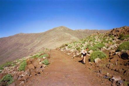 Aufstieg auf den Pico de la Zarza (807m) - höchster Berg der - Pico de la Zarza