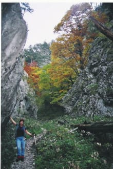 Schneebergwanderung - Payerbach