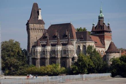 Die Burg Vajdahunyad - Burganlage Vajda-Hunyad
