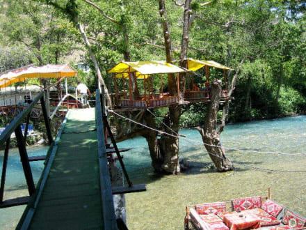 Kombitour Dim Cay2 - Restaurant Dimcay