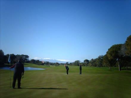 """Sultan"" Golfplatz - Golf"