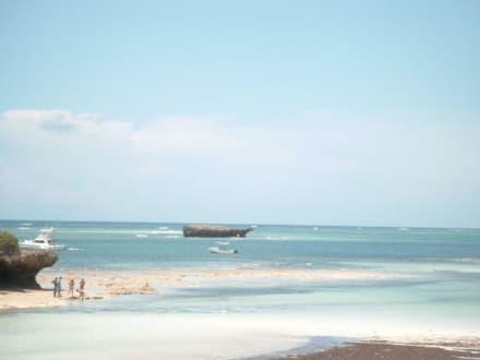 Turtle Bay - Strand Watamu