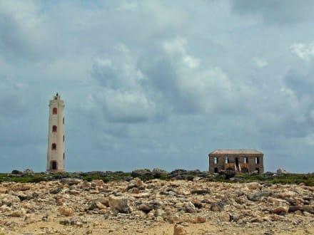 Leuchtturm - Leuchtturm Spelonk