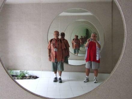Spiegelbilder - Fundacion Cesar Manrique