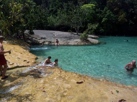 Emerald Pool - Rainforest Tour