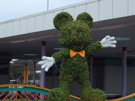Mickey Mouse - Disney World - Magic Kingdom