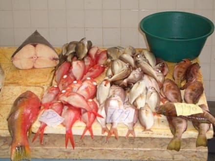 Ein buntes Fischallerlei - Markthalle Mercado dos Lavradores