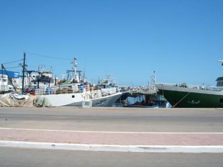 Teil des Hafen von Mahdia - Katamaran Tour Mahdia