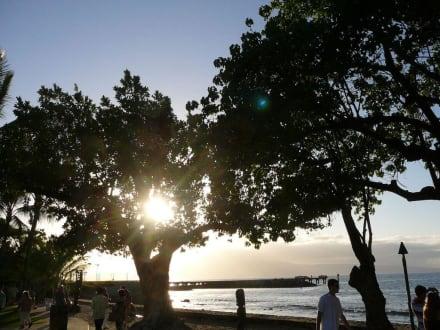 Sonnenuntergang - Old Lahaina Luau