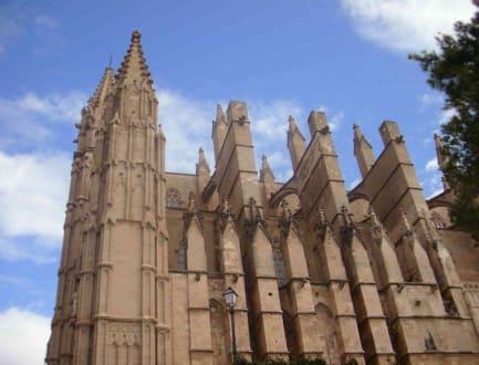 Türme 1 - Kathedrale La Seu