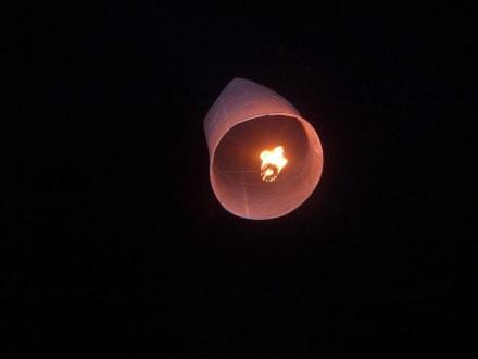 ... dann fliegt er - Lichterfest Loy Krathong