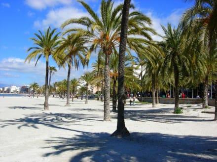 Strand El Arenal - Strand El Arenal/S'Arenal