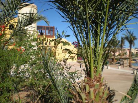 Durchblick - Ausflug nach El Gouna