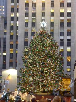 Wo Steht In New York Der Weihnachtsbaum.Weihnachtsbaum Am Rockefeller Center In New York Manhattan