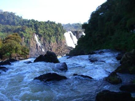 Rivières/lacs/chutes d'eau - Cascades Iguazu
