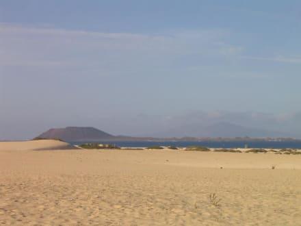Dünenstrand - Naturpark Dünen von Corralejo