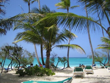 Hotel Grand Caribe Deluxe Hotelbewertung