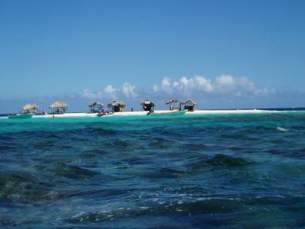 Paradise Island - Isla Paraiso