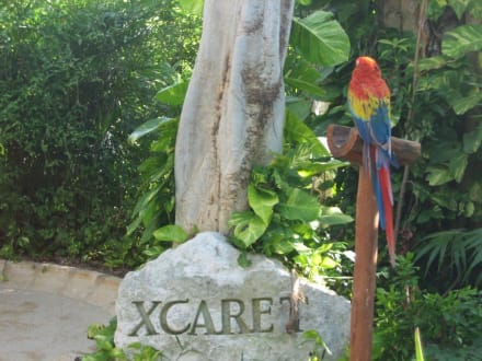 Eingang - Freizeitpark Xcaret