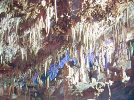 Tropfsteinformen in der Höhle - Coves dels Hams / Hams Höhlen
