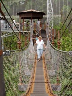 Hängebrücke in der Freiflughalle - Jurong Bird Park