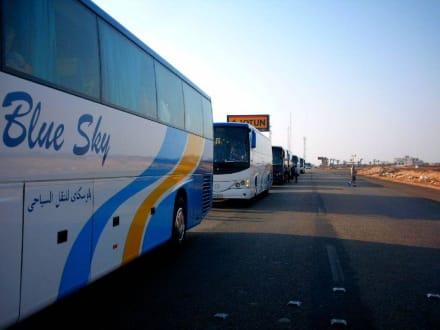 Bustour Kairo - Transport