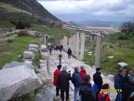Die Basilika! - Antikes Ephesus